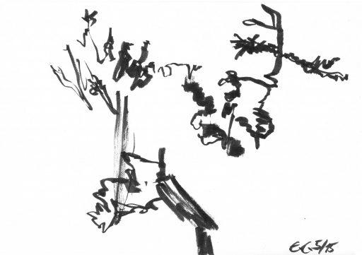 """""""Heutenburg 7"""", 2015, Tusche auf Papier, 14,8 x 20 cm"""