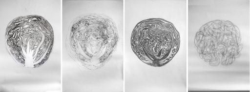 """""""… Die unglaubliche Metamorphose vom Weißkraut bis hin zum Frei-und           Spielkraut in 12 ausgewählten Stufen …"""", 2020, Graphit auf Papier, je ca. 220 x 150 cm"""